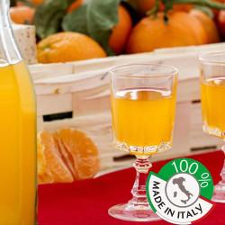 """Liquore al Mandarino di Sicilia """"Mandarinetto"""" Bottiglia da 1 litro"""
