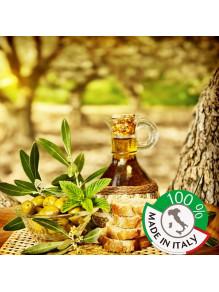 Vendita Olio Extra Vergine di Oliva 100% italiano Estratto a Freddo