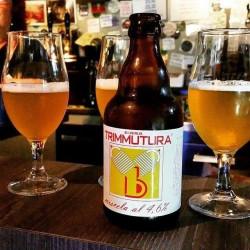 33cl Special Ale Bottiglia Birra Aromatizzata con fiore di fico d'india Trimmutura Miscela