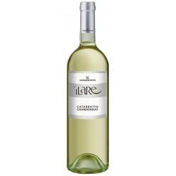 Vino Bianco Catarratto Chardonnay Ilare IGP Bottiglia da 75cl - Cantina Donna di Coppe