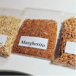 Pasta Integrale Farina Biologica  di Margherito Nidi di...