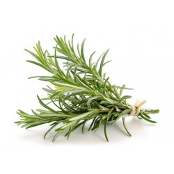Organic Rosmarin in 50g jar