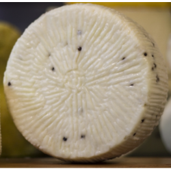 Sicilian Primo Sale Cheese with 500g black pepper