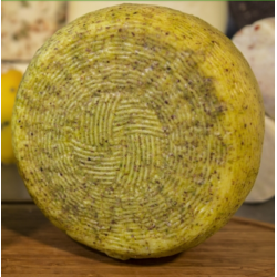 1kg of Sicilian Semi-mature Pistachio Cheese