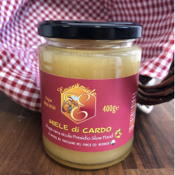 Vendita online Miele Siciliano di Cardo di ape nera presidio Slow Food