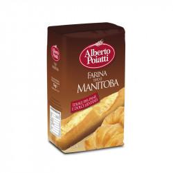 1kg di Farina 0 di Manitoba Alberto Poiatti