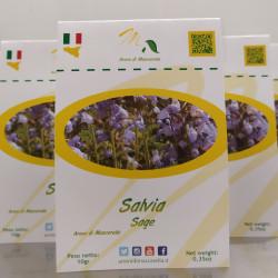 Salvia Siciliana in busta da 10g