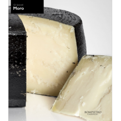 Il Moro semi-aged gourmet cheese painted Roman style