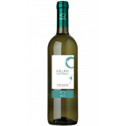 Vino Bianco Grecanico in Bottiglia da 75 cl Cantina Birgi
