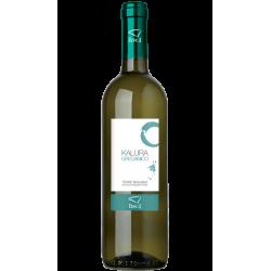 Vino Bianco Grecanico IGP Terre Siciliane in Bottiglia da 75 cl...