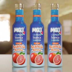 Bevanda di frutta con polpa di anguria e arancia rossa bottiglia da 250ml MG3