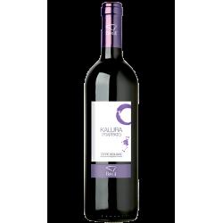 Vino Rosso Frappato IGP Terre Siciliane in Bottiglia da 75 cl...