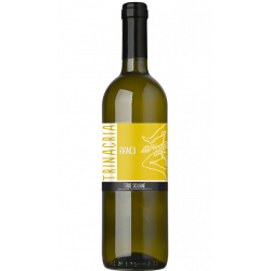 White Wine Blend Uve Autoctone Bottle of 75 cl