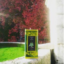 1lt Olio di oliva Extra Vergine Siciliano Biologico in Latta Azienda Agricola Guccione