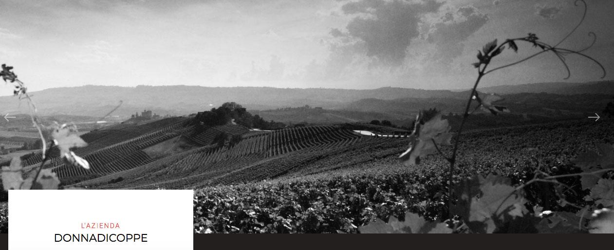 acquistare vino siciliano e birra artigianale siciliana della cantina donnadicoppe
