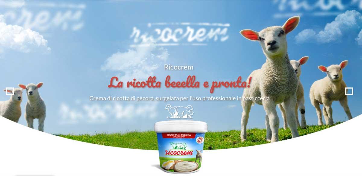 Vendita Prodotti Tipici Siciliani da ricette tipiche siciliane Ricotta Dolce di Pecora per Cannoli