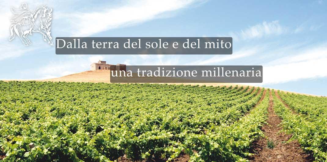 Vendita online vini dolci e vini da tavola siciliani della cantian vinci vini