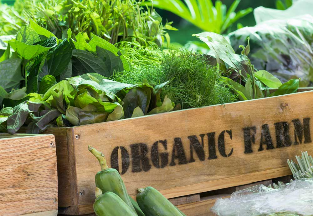 Sale online of organic food from Sicily