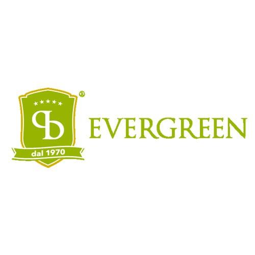 Evergreen Pistacchio di Bronte