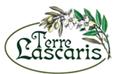 vendita on line olio terre lascaris extra vergine d'oliva